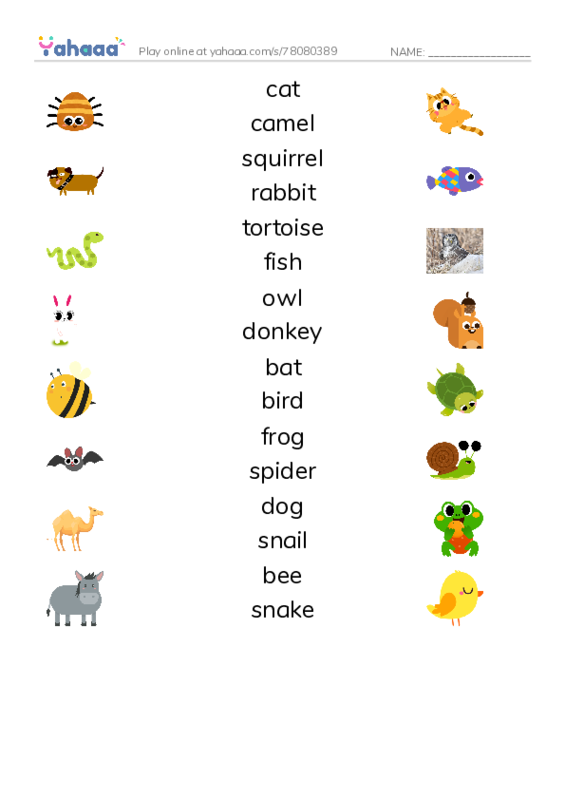 Animals Around Us PDF three columns match words